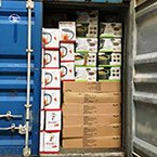 We ship export containers worldwide